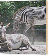 Zebras Wood Print