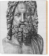 Zeus Wood Print by Granger