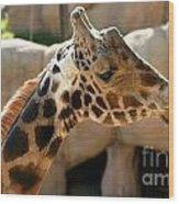 Baringo Giraffe Wood Print