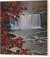Cumberland Falls Ky Wood Print