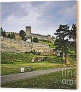 Kalemegdan Fortress In Belgrade Wood Print by Elena Elisseeva