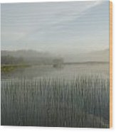 Lake Of The Woods, Ontario, Canada Wood Print