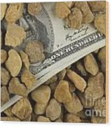 Money Wood Print by Blink Images