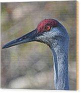 10- Sandhill Crane Wood Print