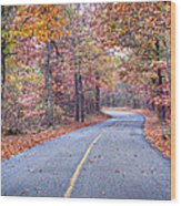 1010-4486 Petit Jean Autumn Highway Wood Print by Randy Forrester