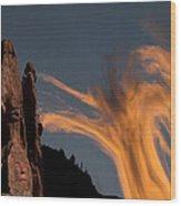 104 Wood Print