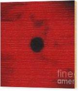 1041 Wood Print
