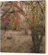 1053 Wood Print