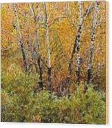 1087 Wood Print