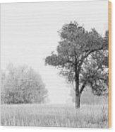 1095 Wood Print