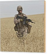 U.s. Marine Patrols A Wadi Near Kunduz Wood Print