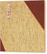 1190 Wood Print