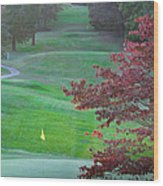 11th Hole At Clarksville C C Wood Print