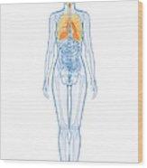 Healthy Lungs, Artwork Wood Print