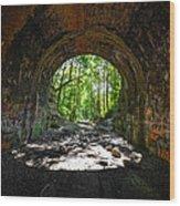 Moonville Tunnel  Wood Print