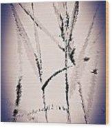 Water Reed Digital Art Wood Print