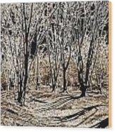 Ambresbury Banks  Wood Print