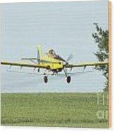 Plane Wood Print