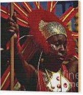 West Indian Day Parade Brooklyn Ny Wood Print