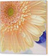 1477-001 Wood Print