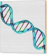Dna Molecule, Artwork Wood Print