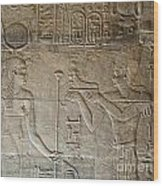 Philae Wood Print