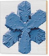 Snow Crystal Wood Print