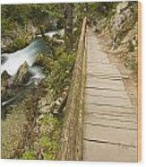 The Soteska Vintgar Gorge Wood Print