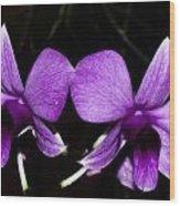 Orquid Wood Print