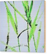 Water Reed Digital Art Wood Print