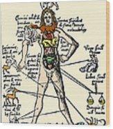 16th-century Medical Astrology Wood Print