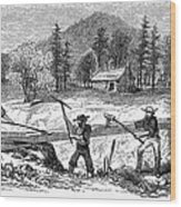 California Gold Rush Wood Print