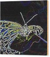 Colorful Butterfly Wood Print