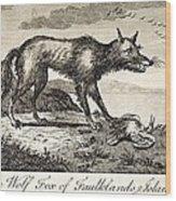 1778 Falkland Islands Wolf Fox Extinct Wood Print