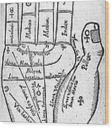 17th Century Palmistry Diagram Wood Print by Middle Temple Library