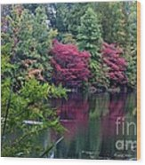 Sugar Ridge State Fish And Wildlife Area Wood Print by Jack R Brock
