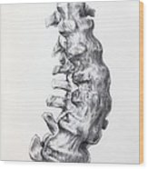 1852 Gideon Mantell's Fused Spine Wood Print