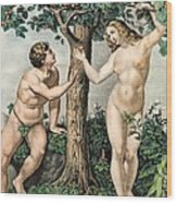 1863 Adam And Eve From Zoology Textbook Wood Print