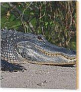 19- Alligator Wood Print