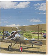 1916 Sopwith Pup Airplane On Airfield Poster Print Wood Print