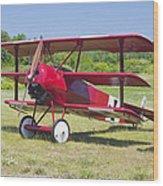 1917 Fokker Dr.1 Triplane Red Barron Canvas Photo Print Poster Wood Print
