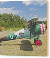 1917 Nieuport 28c.1 Antique Fighter Biplane Canvas Photo Poster Print Wood Print