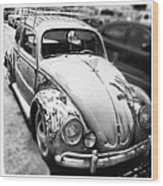 1961 Volkswagon Beetle Wood Print