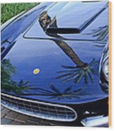 1963 Apollo Front End Wood Print