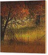 1969 Wood Print