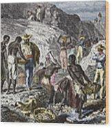 19th-century Diamond Mining, Brazil Wood Print