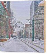 1st Real Snow Golddome 2012 Wood Print