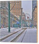 1st Real Snowfall Metro Rail 2012 Wood Print
