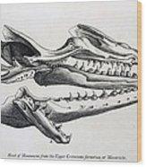 1770 Maastricht Mosasaur Wood Print