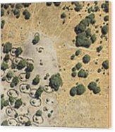 A Village On The Shores Of Lake Chad Wood Print